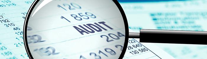 التدقيق الحكومي- Government Auditing