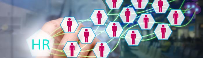 الممارسات الاحترافية لادارة الموارد البشرية والتطوير الوظيفي