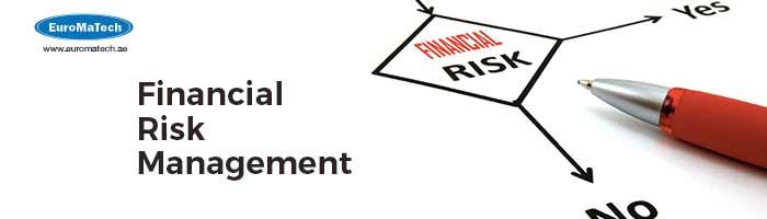 الكفاءة التخصصية في إدارة المخاطر المالية وتحليل الأداء المالي