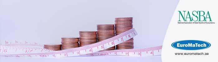 معايير تدقيق ومراجعة المخاطر المالية وتحليل الاداء المالى