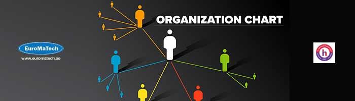 النماذج الحديثة في إعداد الهياكل التنظيمية والوصف الوظيفي