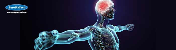 الفسيولوجية البشرية والأمراض الصناعية