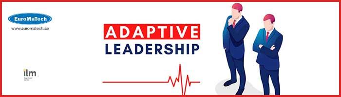 القيادة التكيفية وتحقيق التميز في المنظمات والأعمالAdaptive Leadership
